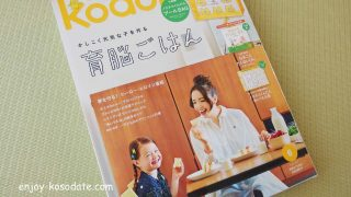 プールバッグや絵本など豪華付録が嬉しい!kodomoe(コドモエ)6月号を購入してみました