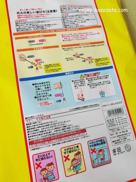 IMGP9503 - コピー
