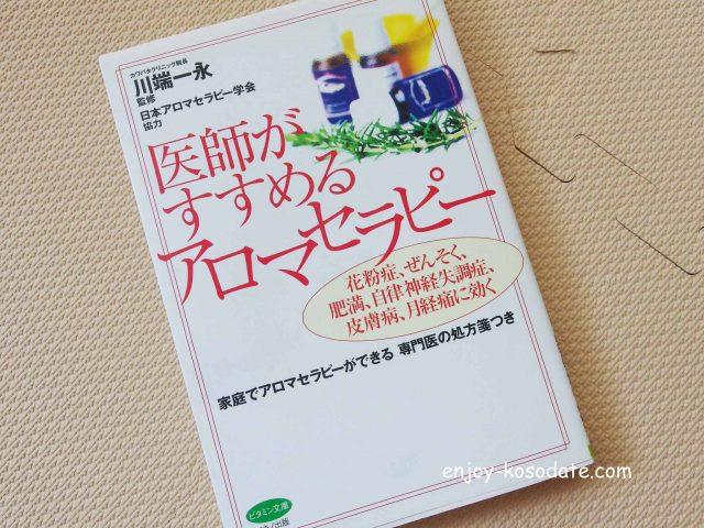 IMGP9540 - コピー