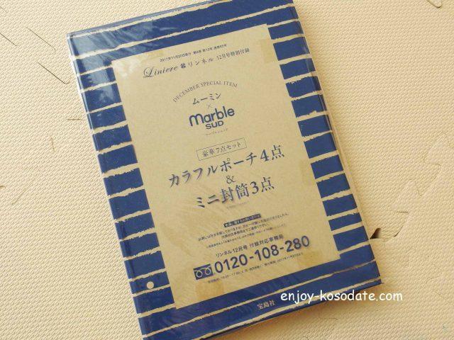 IMGP1969 - コピー